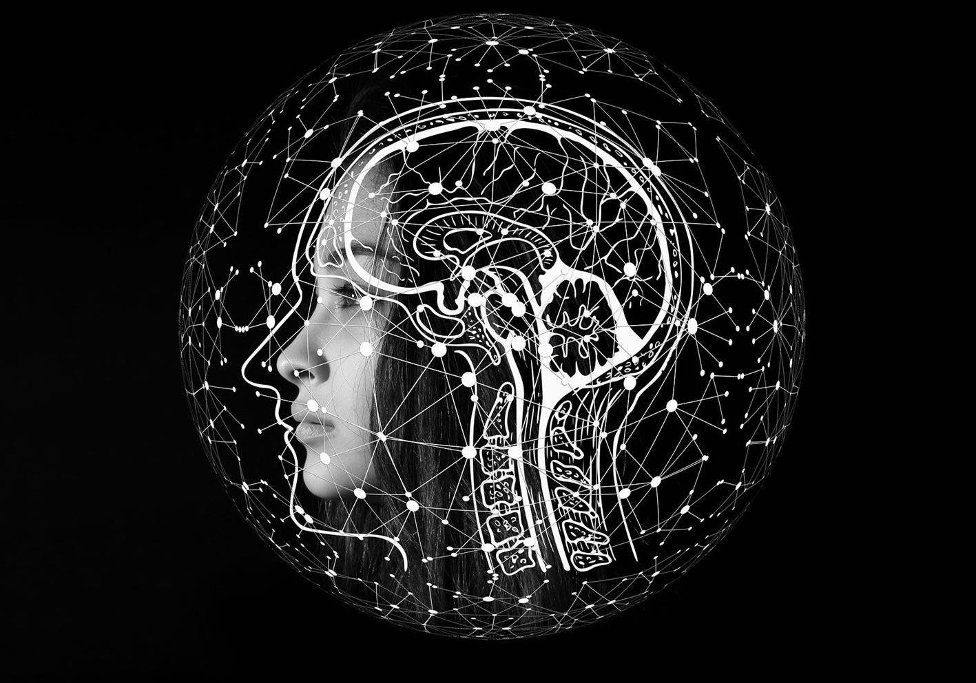 E-Ciencia - Tu sitio web de ciencia y tecnología